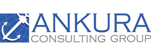 Image result for ankura consulting group